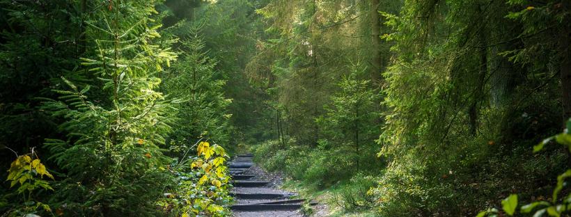 Ekotrasa Gemerská zelená cesta. #ObjavUdržateľnéSlovensko s AiCES